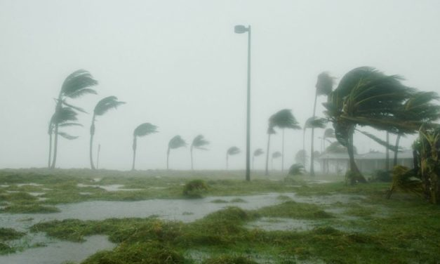 5 Tips For Driving In Windy Weather